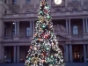 tree-customshouse